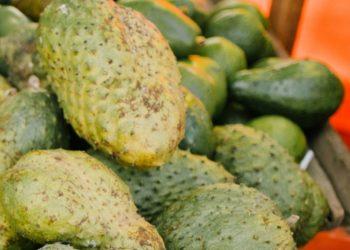 Curiosidades y beneficios del consumo de guanábana que no conocías