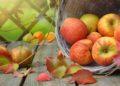 Conoce las variedades de manzanas y sus características nutricionales